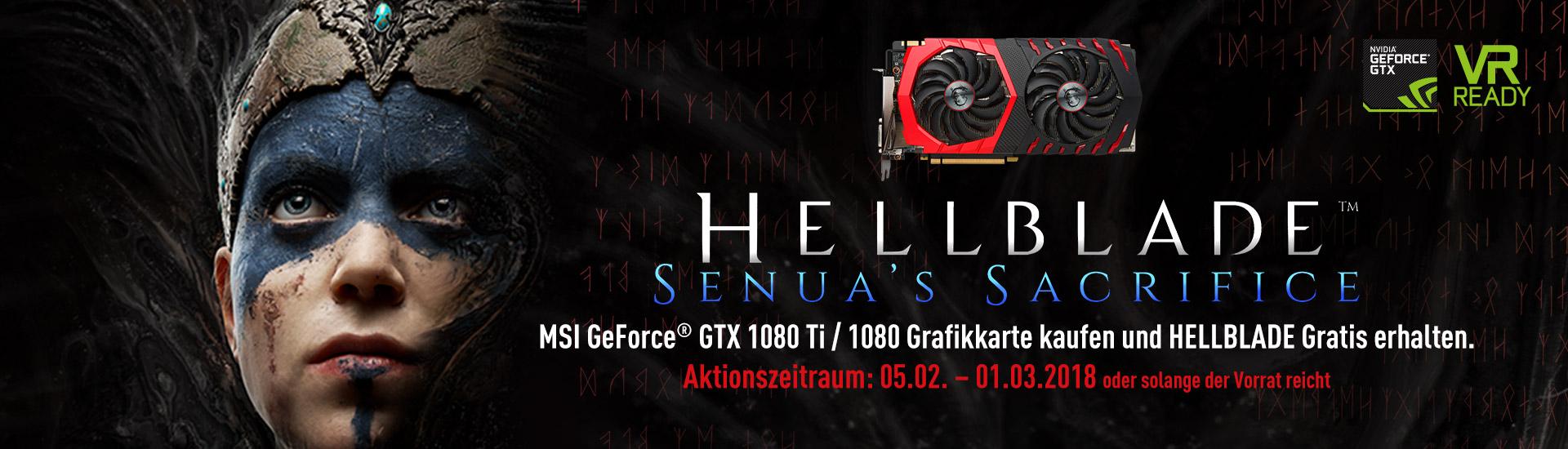 1080 VGA Hellblade Bundle
