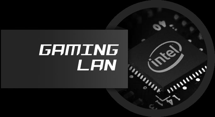 Gaming LAN