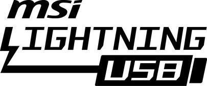 Lightning USB logo